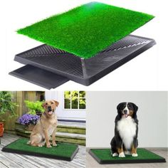 EASY TO USE: Pet potty is lightweight, convenient, and mimics grass CLEAN