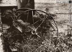 Black and white photography for images in grayscale, in black and white. Schwarzweißfotografie für Bilder in Graustufen, in Schwarz und Weiß.  Bilder und Grußkarten Wagenräder