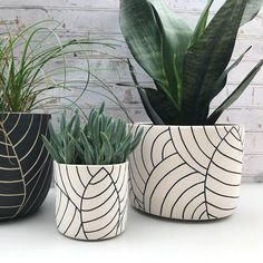 MADE TO ORDER - large ceramic planter - all white with black leaves planter - modern ceramics - minimalist - large pottery planter - leaf carved large ceramic planter – ceramic container – utensil holder – wheel thrown planter - Painted Plant Pots, Painted Flower Pots, Decorated Flower Pots, House Plants Decor, Plant Decor, Large Ceramic Planters, Modern Planters, Wheel Thrown Pottery, Ceramic Flowers