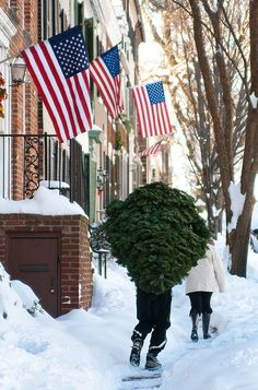 Christmas tree. Snow. American flag.