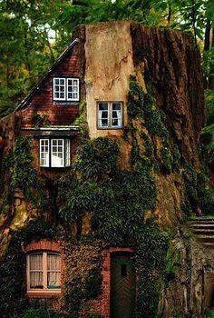 house built into a tree. I sooooo want to live with a tree INSIDE my house! Beautiful Homes, Beautiful Places, Fairytale House, Crazy Houses, Unusual Homes, Fairy Houses, Tree Houses, Hobbit Houses, Houses Houses