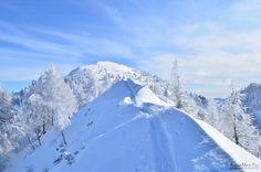 Freiheitssehnsucht...    25.01.2013 Skitour auf den Schwarzkogel Mount Everest, Nostalgia, In This Moment, Mountains, Nature, Photos, Travel, Longing For You, Freedom