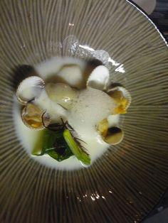 Oester, kokkels, met zeewier in een saus van oestervocht en met oesterschuim. Van Edwin Vinke van de Kromme Watergang vanmiddag bij Le Petit Pecheur in Yerseke. Ik weet nu alles over scheermessen (of mesheften) en kokkels en de visserij op die schelpdieren. De eersten vallen trouwens onder de 'exoten' dat wist ik ook niet.