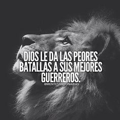 1508 Best frases images in 2020 Motivational Phrases, Inspirational Quotes, Little Bit, Spanish Quotes, Gods Love, Sentences, Life Lessons, Positive Quotes, Favorite Quotes