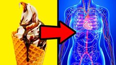 What If You Stopped Eating Sugar for 1 Week - YouTube
