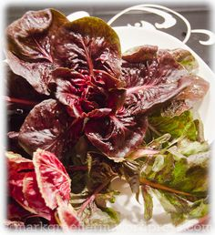 Cicorino Rosso Cabbage, Vegetables, Food, Essen, Cabbages, Vegetable Recipes, Meals, Yemek, Brussels Sprouts