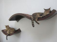 cat shelves cat-shelves - love this idea!