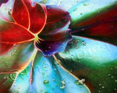 This is incredible - colored pencil drawing from TheArtDiva
