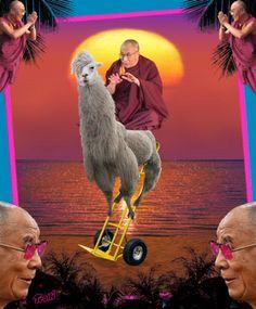 psychedelic lama