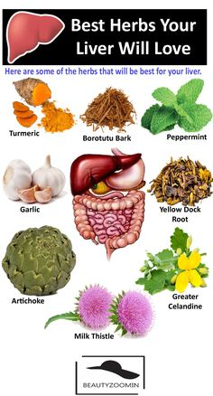 The liver is one of the essential organs of our body, which is vital to overall health, which is fundamental because it is responsible for Fatty Liver Diet, Healthy Liver, Healthy Tips, Health Diet, Health And Nutrition, Health Facts, Health And Wellness, Fatty Liver Treatment, Alternative Health Care