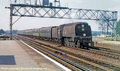 Buses And Trains, Old Trains, Vintage Trains, Diesel Locomotive, Steam Locomotive, Southern Trains, Holiday Train, Southern Railways, Steam Railway