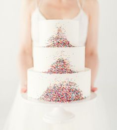 Modern tropical sprinkle cake by Eileen Carter Creations