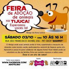 BONDE DA BARDOT: RJ: Campanha de adoção de animais na Tijuca, neste sábado (03/10)