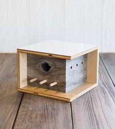 Casas de pássaros super fofas inspiradas nos arquitetos da Bauhaus.