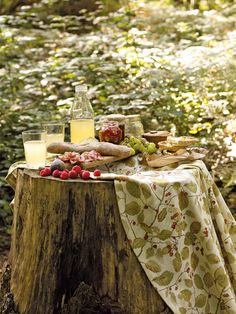 Sanderson Woodland Walk Fabric And Wallpaper Collection A Picnic In The Woods Makes For Magical Setting Two Berries Perfect