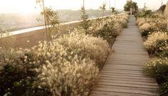 parque-de-la-ereta-alicante-23 « Landscape Architecture Works | Landezine
