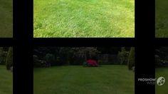 Beautiful weed free lawns