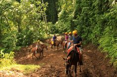 Horseback riding through the Costa Rican jungles!!! Amazing! <3