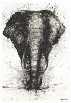 Beautiful Ink Splattered Animal Paintings by Chinese Artist Hua Tunan. Draw Realistic, Street Art, Typographie Logo, Splatter Art, Elephant Art, Pencil Portrait, Art Design, Pet Portraits, Drawing Portraits