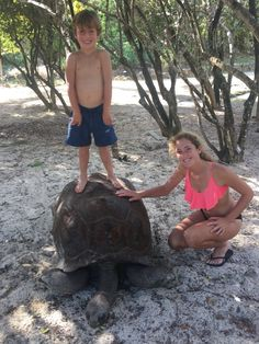 Huge Turtles to ride on, check. Necker Island// Necker Island is a small private island in the British Virgin Islands just north of Virgin Gorda. It is owned by British billionaire Sir Richard Branson, known for his group Virgin. Wikipedia
