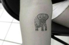 Lovely elefant