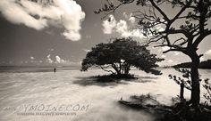 Anne's Beach Florida Keys 12x18 Limited Edition Metal Print by TheAndyMoineCompany, $125.00 #Photography #Blackandwhitephotography #FineArt