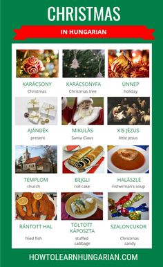 Visual vocabulary for Hungarian words with English translation regarding Christmas. English Food, Learn English, Love Holidays, Christmas Holidays, Hungary Travel, Christmas Words, Hungarian Recipes, Fried Fish, Christmas Traditions