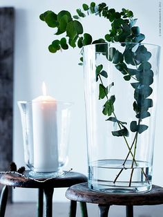 <p><strong>Två oumbärliga juldofter för mig är gran och eukalyptus. Ofta har de ju pampigt sällskap av julpynt eller amaryllis, men om de får stå för sig själva är de väldigt vackra i all sin enkelhet.</strong></p>