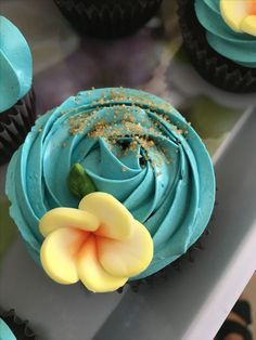 Hawaii/ Moana cupcakes Moana Party, Moana Theme, Moana Birthday Party, Hawaiian Birthday, Luau Birthday, 6th Birthday Parties, Luau Party, 1st Birthdays, Third Birthday