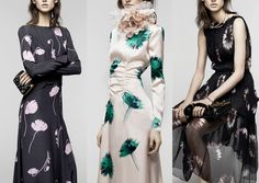 Nina Ricci  - Pre A/W 2104/15-Single Stems – Blurred Florals – Inky Depths – Overexposed Flower heads – Shadowy Areas – Off-set Imagery – Spaced Repeats