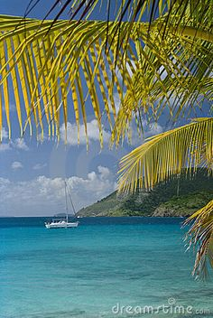 A sailboat and beautful palm tree with the island of Jost Van Dyke in the background in the British Virgin Islands BVI #Caribbean (click on comp image at the site for much larger view)