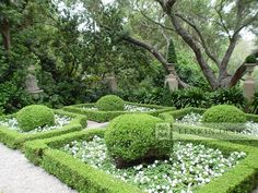 this is what is drawn right?  can we possibly change to other partere idea... - French Parterre Garden traditional landscape