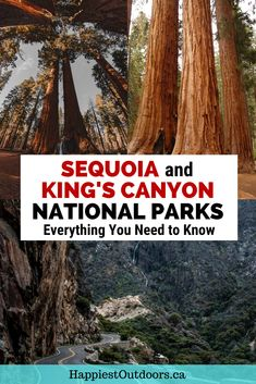 Things to do in Sequoia and Kings Canyon National Parks including the best places to hike, see giant trees, and take scenic drives. California National Parks, National Parks Usa, California Travel, Yosemite National Park, Sequoia National Park Camping, Michigan Travel, West Coast Road Trip, Road Trip Usa, Yosemite Sequoia