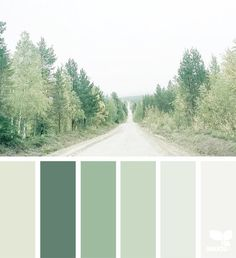 Image result for sage color palette