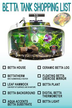 betta fish ez care tank how to clean