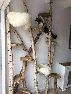 Kratzbaum Selber Bauen Aus Naturmaterialien Einen Tollen Krazbaum Selber  Bauen | Playin Dogs | Pinterest | Cat, Cat Furniture And Cat Tree
