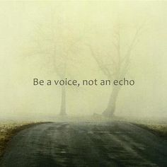 Be a voice, not an echo.