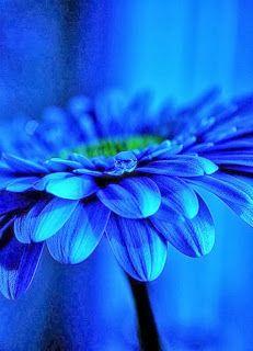 hd resimler photo- abduko.com
