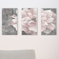 'Pastel Pink Peony on Gray' 3 Piece Graphic Art Wall Plaque Set