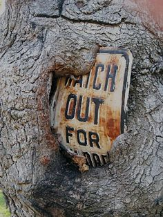 Watch Out For Hungry Tree !, via Flickr.