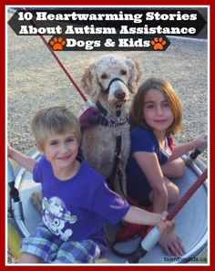 10 Amazing Autism Assistance Dogs. Celebrating The Healing Bond Between Dogs And Kids. 10 videos proving dogs can make a difference