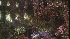 From the Secret Garden movie