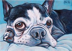 5 x 7 Custom Pet Portrait Painting in Acrylic by bethanysalisbury, $60.00