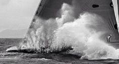 Filed under sailing sailor photo northsails