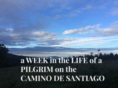 IF you're wondering what the Camino de Santiago is like, here's a link to a diary-style post all about it so you can decide if it's for you or not! Sore Knees, The Camino, Free Blog, How To Introduce Yourself, Things I Want, France, Link, Beach, Style