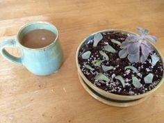 Mug and succulent planter- Heritage Pottery Deidre Morgan