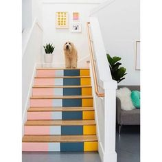 Painted Stairs, Painted Staircases, Staircase Painting, Staircase Diy, Painted Floorboards, Painted Floors, Decoration Inspiration, Decor Ideas, Kid Decor