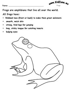 All about frogs for kids and teachers (http://www.kiddyhouse.com ...