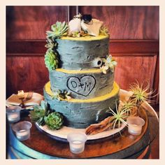 Cute Tree Bark Wedding Cake and it even has succulents!!