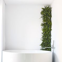 Home director Brett Walther offers five exciting new ways to decorate your home with plants.